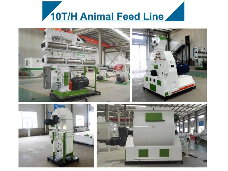 10T/H Animal Feed Pellet Mill