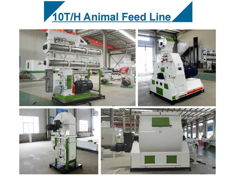 10T/H Animal Feed Pellet Production Line