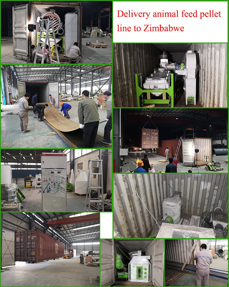 3-4t/h animal feed turnkey project