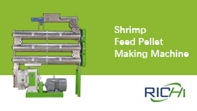 Shrimp Feed Pellet Making Machine