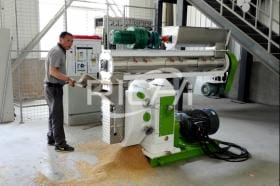 The 3-5T/H feed pellet machine in Qatar