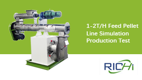 1-2T/H Feed Pellet Line Simulation Production Test in RICHI Workshop
