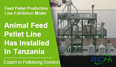 Animal Feed Pellet Production Line in Tanzania, Complete Feed Pellet Production Line Exhibition Mode