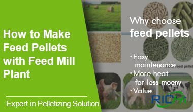 How to make animal feed pellets with feed mill plant