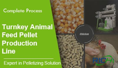 Turn-key Poultry Feed Pellet Production Line