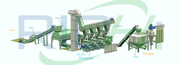 professional design biomass wood pellet machine for Indonesia market