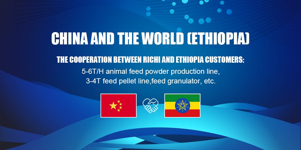 Ethiopia chicken poultry feed line for pellet