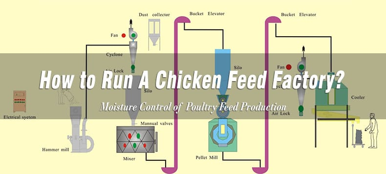 layer chicken stock feed producing equipment machinery
