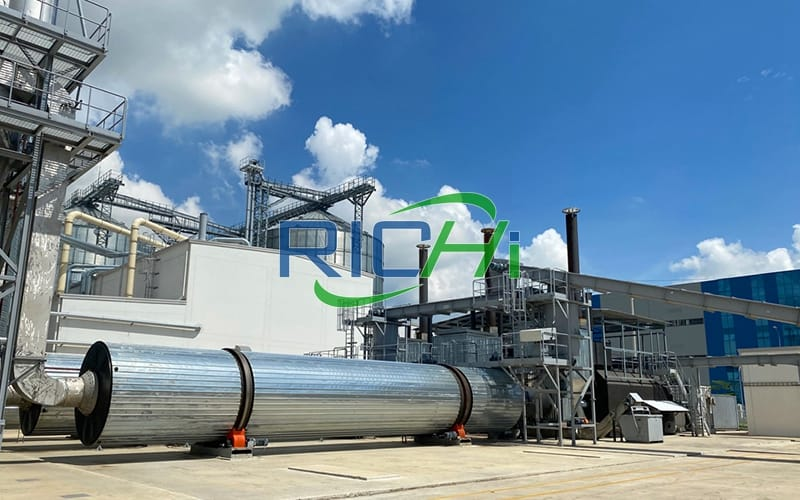 China professional 8 tons per hour straw wood pelletizing line for biomass waste