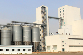 RICHI Feed Production Line